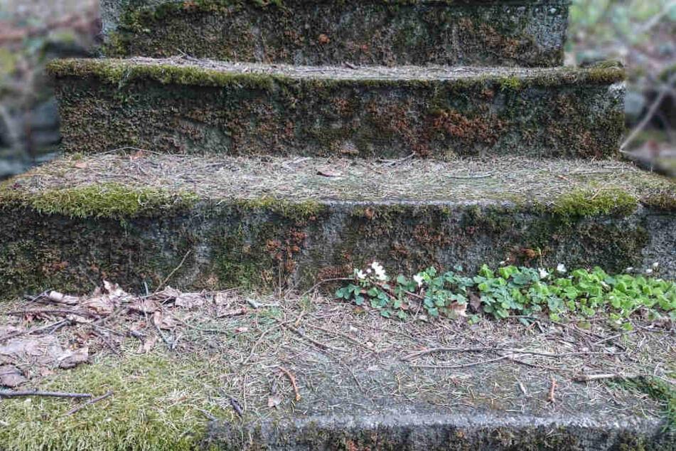 Ein 12 Jahre alter Junge ist im Juni 2014 während eines Schulausflugs verstorben, nachdem er eine ungesicherte Treppe hinunterstürzte (Symbolbild).