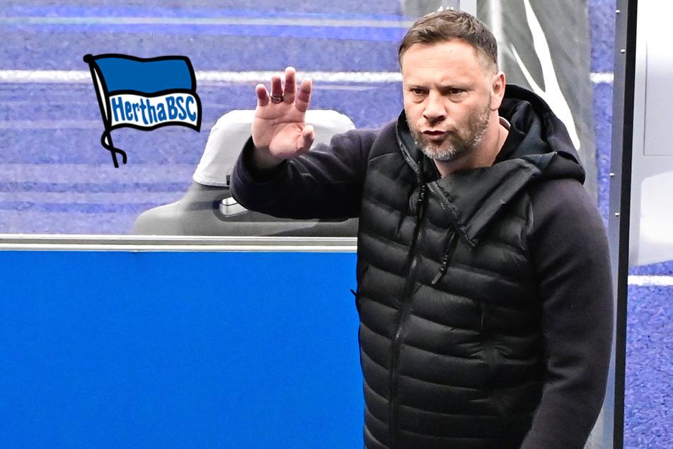 Corona-Alarm bei Hertha! Dardai, Hamzagic und Lukebkio positiv getestet