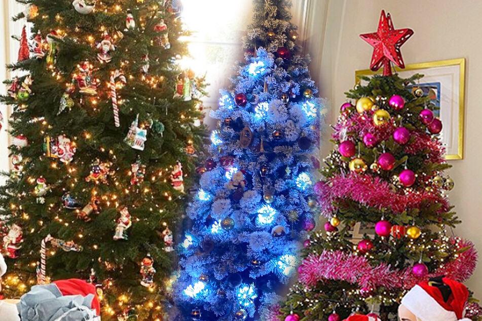 So schön sind die Weihnachtsbäume der Promis