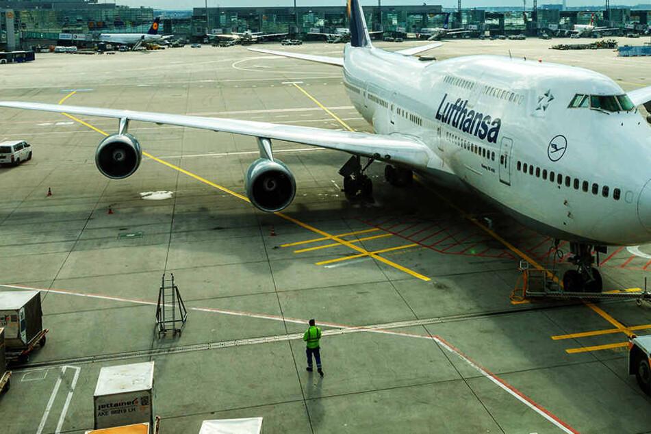 Am Frankfurter Flughafen verstarb ein Mann im Bereich der Frachtlogistik, nachdem er von einem Lastwagen erfasst wurde.