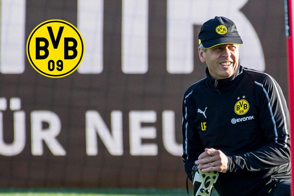 Notstand in der Defensive: BVB vor Verpflichtung dieses großen Abwehrtalents!