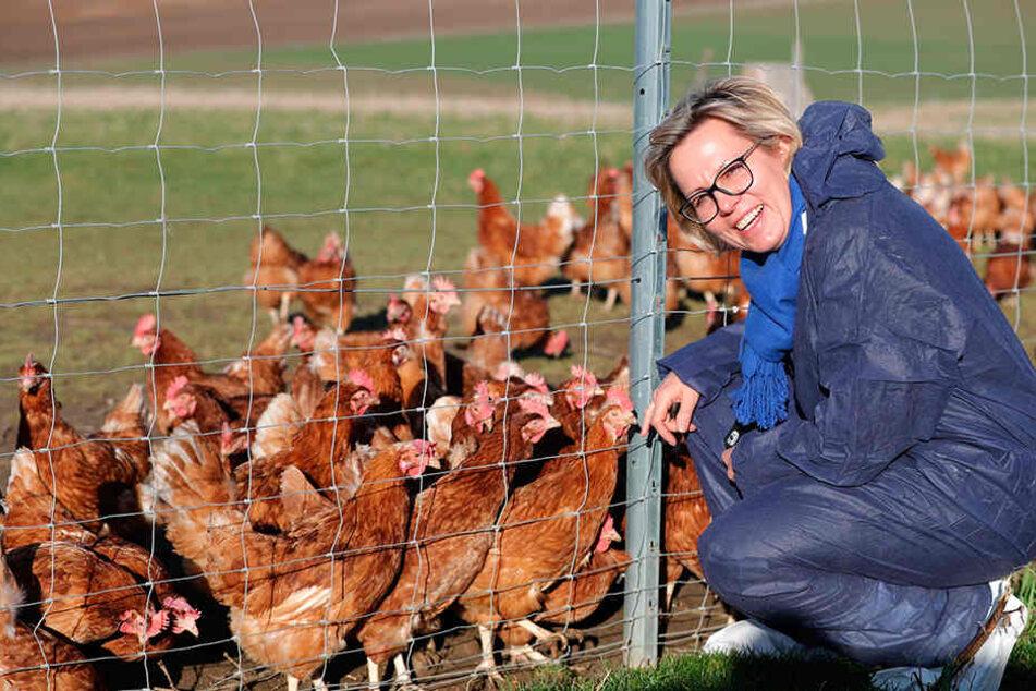 Sozialministerin Barbara Klepsch (52, CDU) besuchte für die Vorstellung des Berichts den Geflügelhof Weber in Schönberg. Hier laufen Tiere frei.