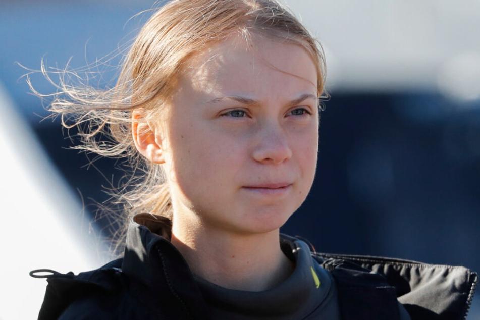 Greta Thunberg wurde von einem Nachbarschaftsverein ein Esel angeboten.
