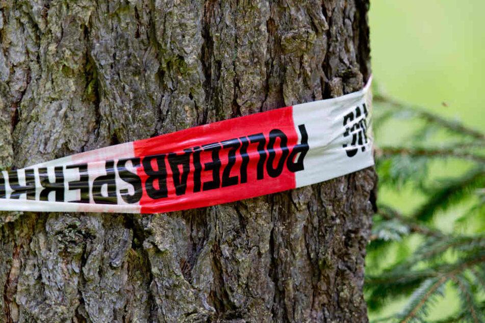Der Fahrer verlor in einer Kurve die Kontrolle und krachte gegen einen Baum. (Symbolbild)