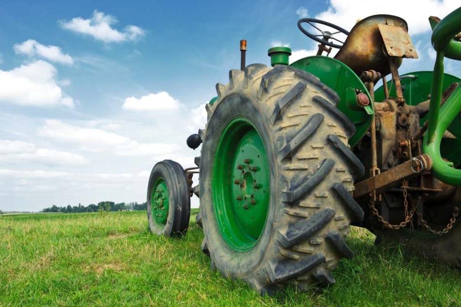 Er fährt, sie bläst: Die lüsterne Traktor-Ausfahrt!