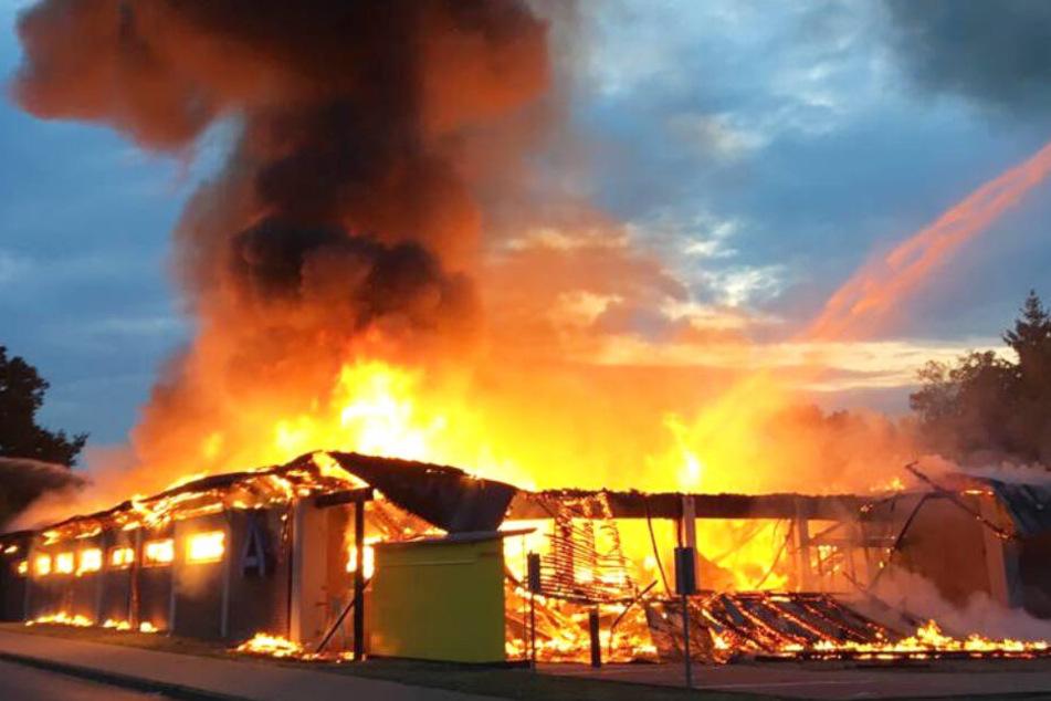 Aldi-Markt völlig zerstört: War es ein Brandstifter?