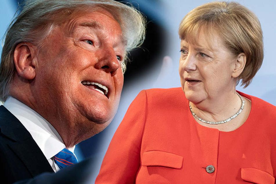 Trump sicher: Deutschland fälscht Asyl-Zahlen