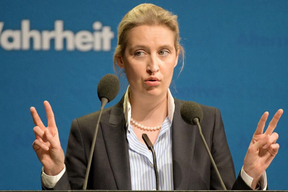 Alice Weidel spricht auf dem Parteitag der AfD Baden-Württemberg.