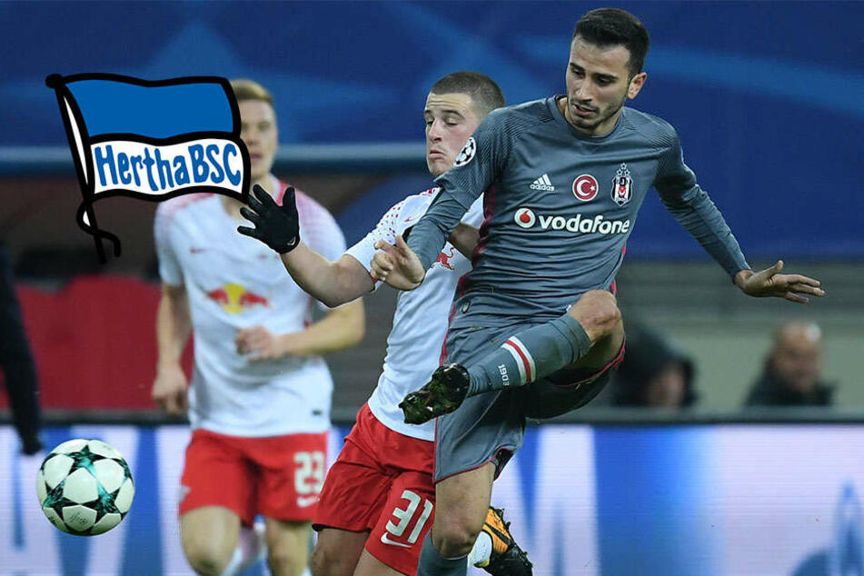 Holt Hertha im Winter diesen Besiktas-Star?