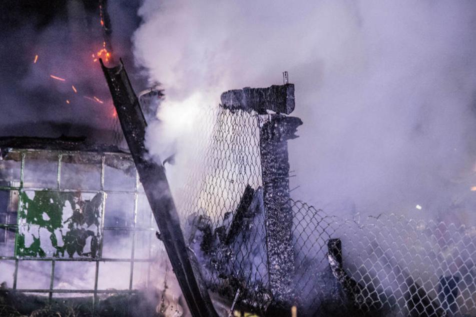 13 Tiere kamen in den Flammen um.