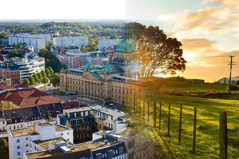 Stadt, Land oder Speckgürtel: Wo fühlst Du Dich am wohlsten?