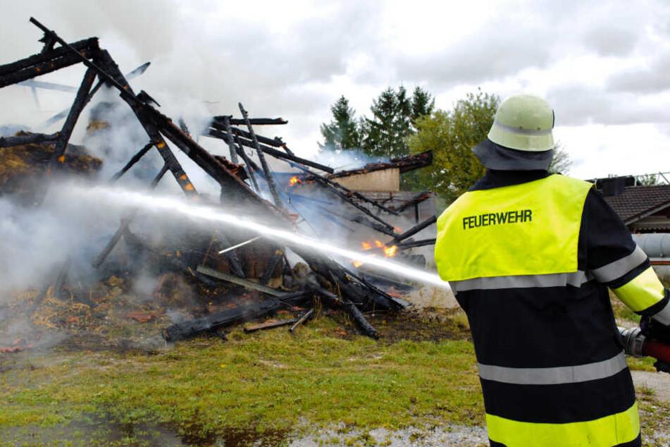 Der Carport wurde bei dem Brand komplett zerstört. (Symbolbild)