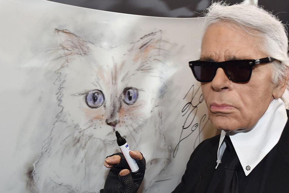 Katze Choupette war Lagerfeld Ein und Alles.