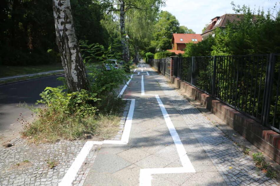 Dieser Zickzack-Radweg in Berlin-Zehlendorf sorgt derzeit für Spott.