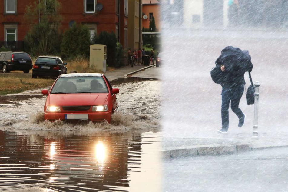 Wer steht in Dresden am schlimmsten im Regen?