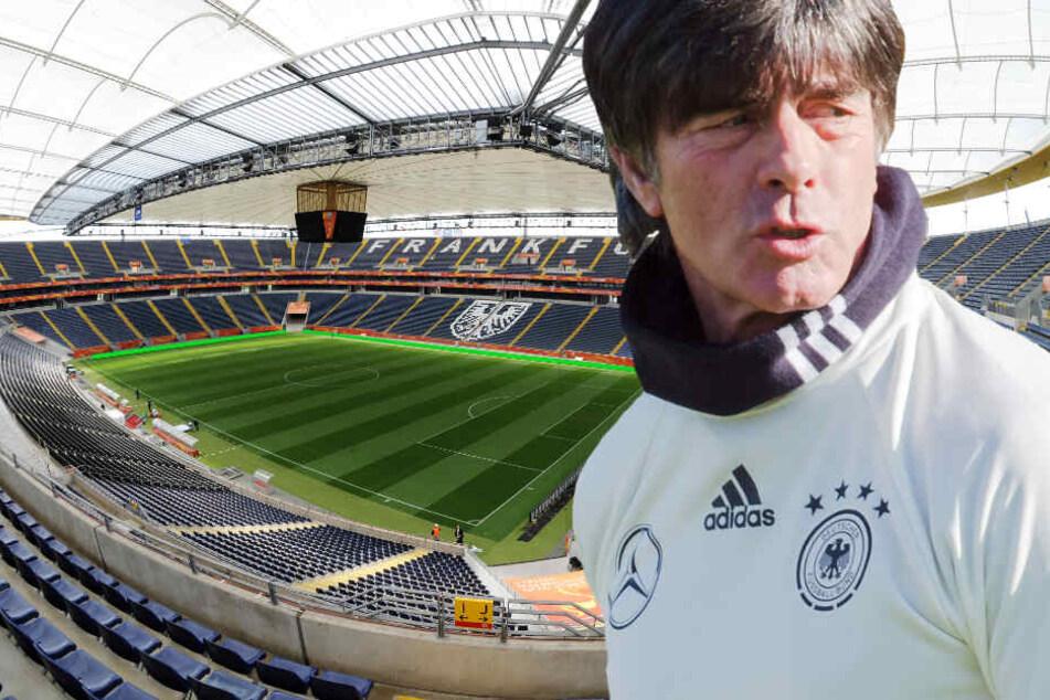 Die Fotomontage zeigt Bundestrainer Jogi Löw vor der Frankfurter Commerzbank-Arena.