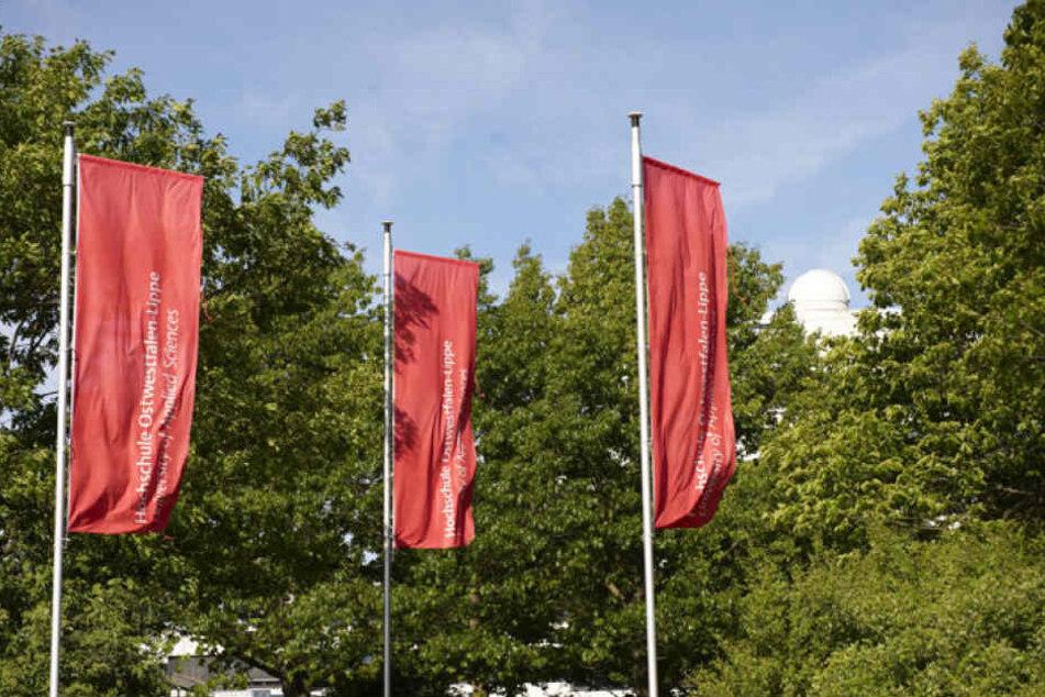 Der neue Studiengang ist für die Hochschule Ostwestfalen-Lippe ein Alleinstellungsmerkmal.