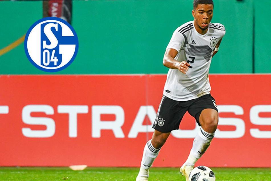 Nach Bayern und Bremen: Auch Schalke steigt in Poker um Henrichs ein!