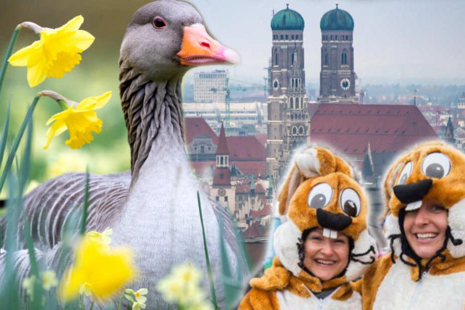 Ostern in München: Das kannst Du am Sonntag und Montag machen