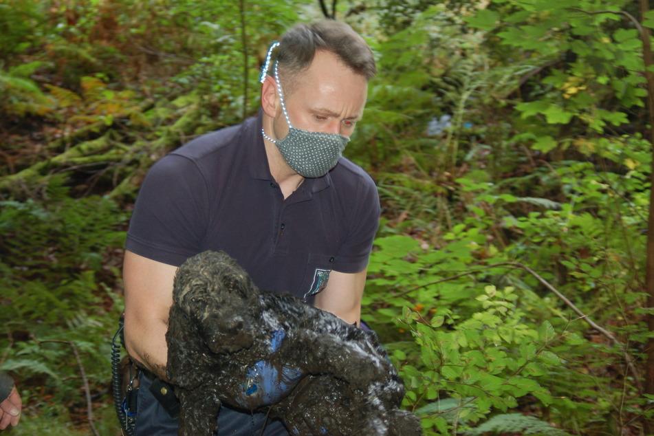 Gerettet: Der Hund überlebte den Ausflug in den Schlamm dank der Hilfe der Feuerwehr.