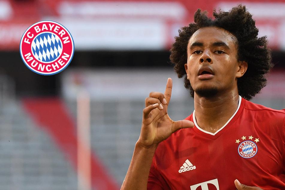 FC Bayern streicht Zirkzee überraschend aus Champions-League-Aufgebot!