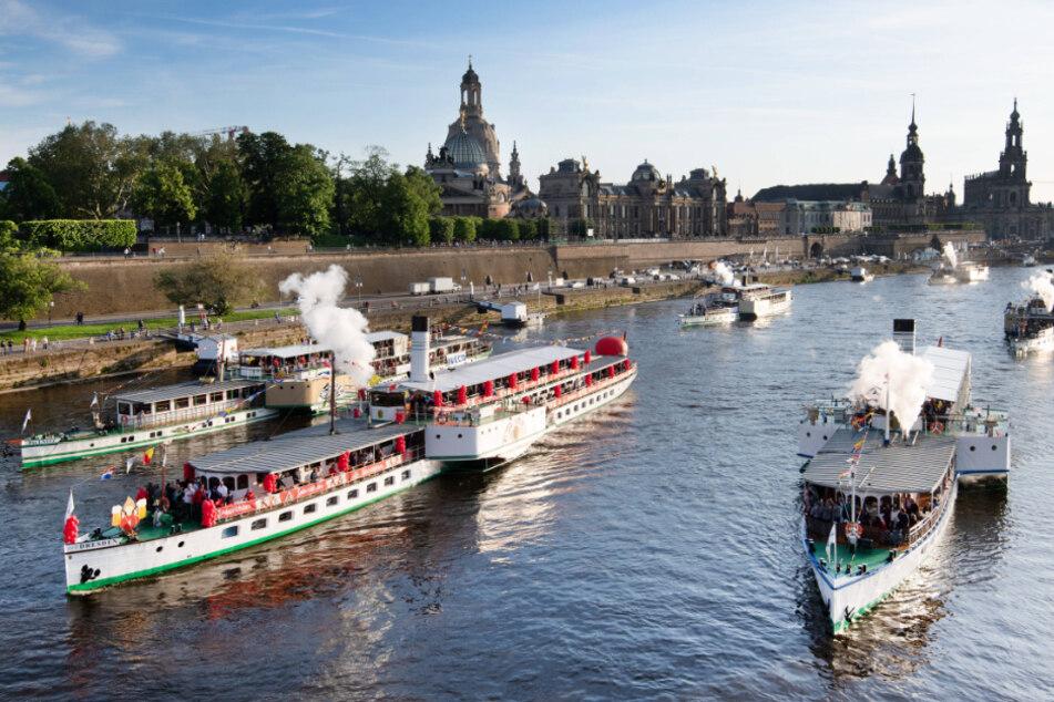 Die Weiße Flotte gehört zu Dresden und soll vor der Zerschlagung gerettet werden.