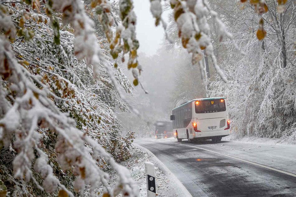Kommt die Kältepeitsche? Bauernregel sagt harten Wintereinbruch voraus