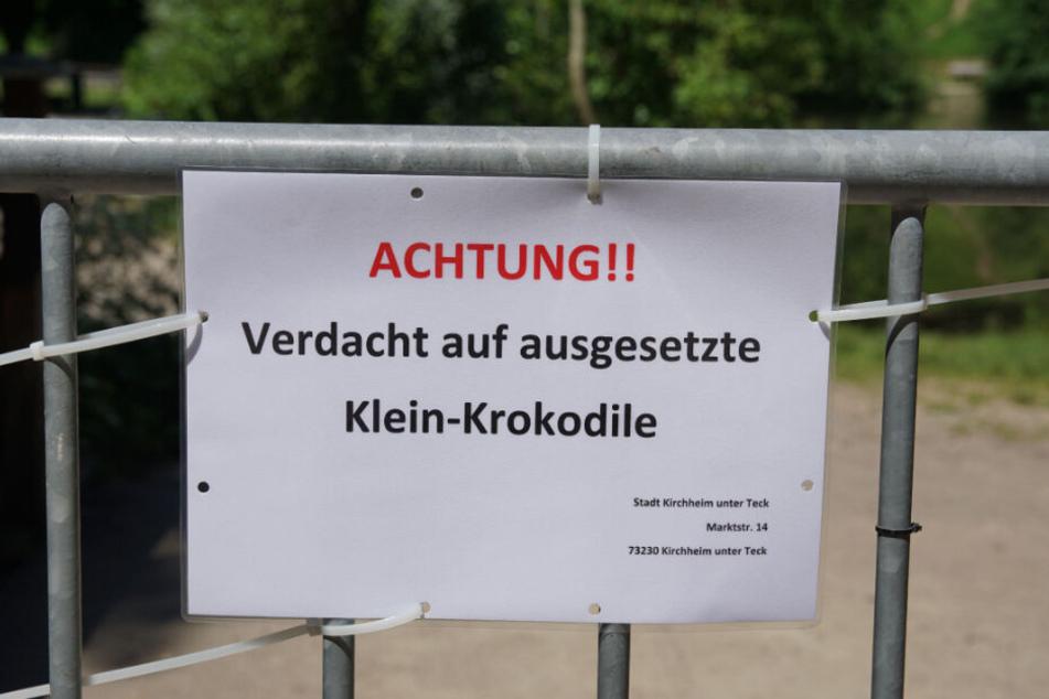 Mitte Juni hatten Spaziergänger wiederholt angegeben, Krokodile im Wasser gesehen zu haben, woraufhin die Bürgerseen in Kirchheim unter Teck gesperrt wurden.