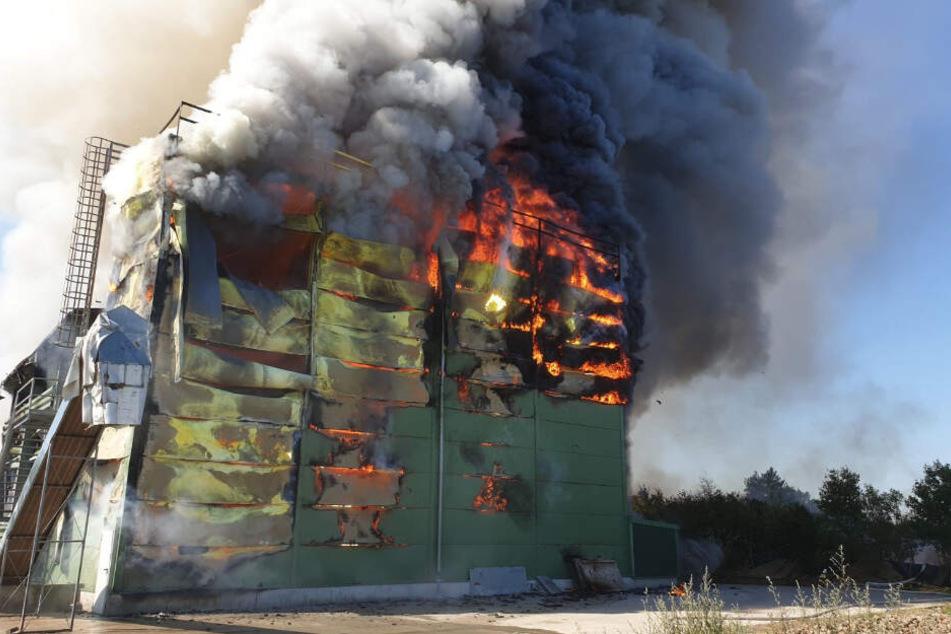 Flammen und Rauch steigen aus dem brennenden Stall auf.