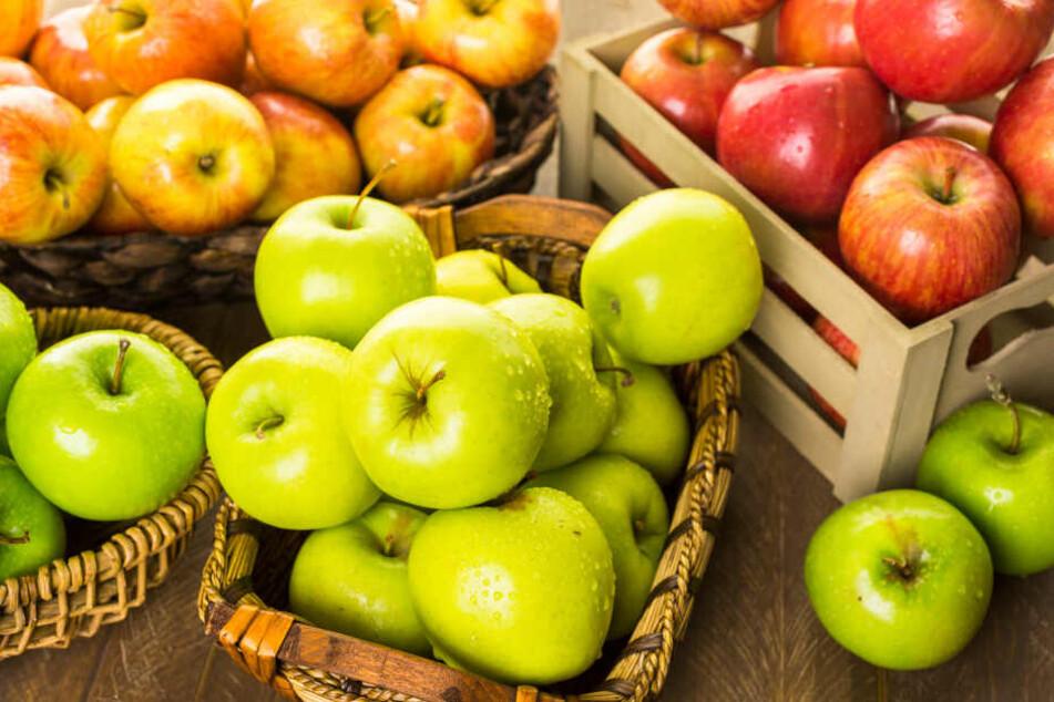 Im Rheinland gibt es über 300 Betriebe die Äpfel anbauen. (Symbolbild).