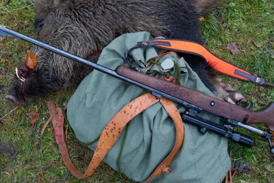 Deutscher bei Wildschwein-Jagd in Polen angeschossen