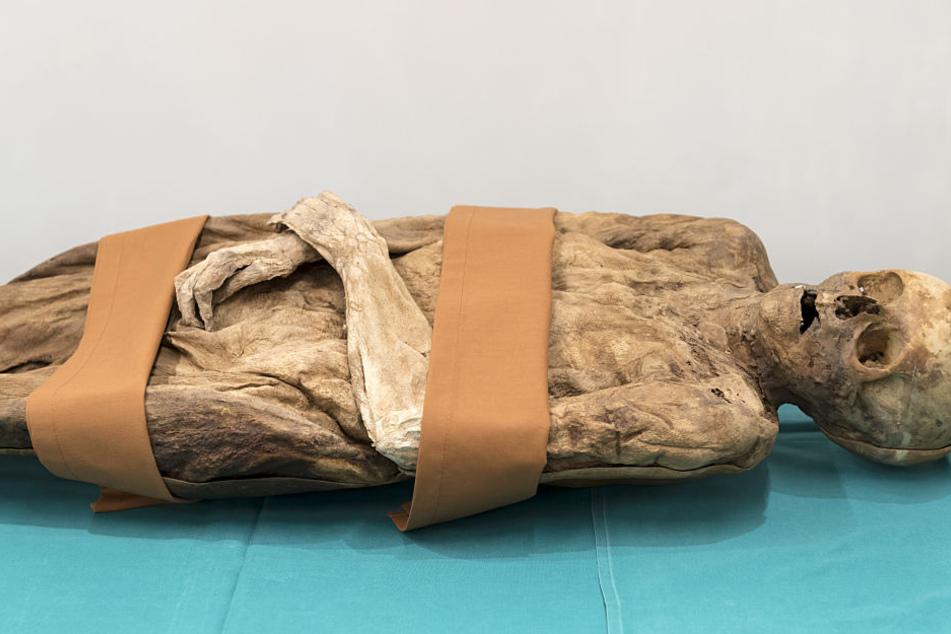 Das sind die sterblichen Überreste von Anna Catharina Bischoff.