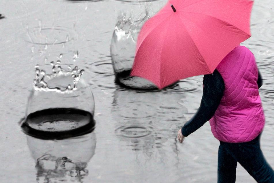 Wer am Wochenende vor die Tür geht, sollte in jedem Fall einen Schirm mitnehmen (Symbolbild).