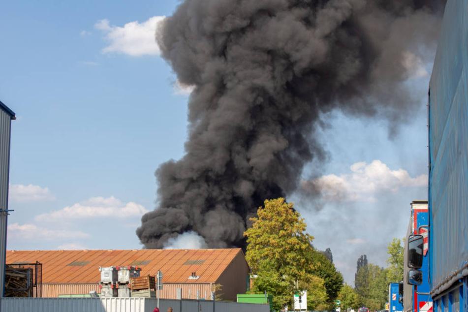 Säcke mit Plastikmüll hatten sich entzündet - Eine große Rauchwolke stieg auf.