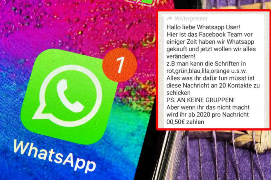 Neue Schriftarten und Farben bei WhatsApp: Das hat es mit der Nachricht auf sich!