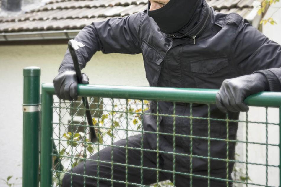 In mindestens 15 Lauben sollen die Diebe gewaltsam eingebrochen sein. (Symbolfoto)