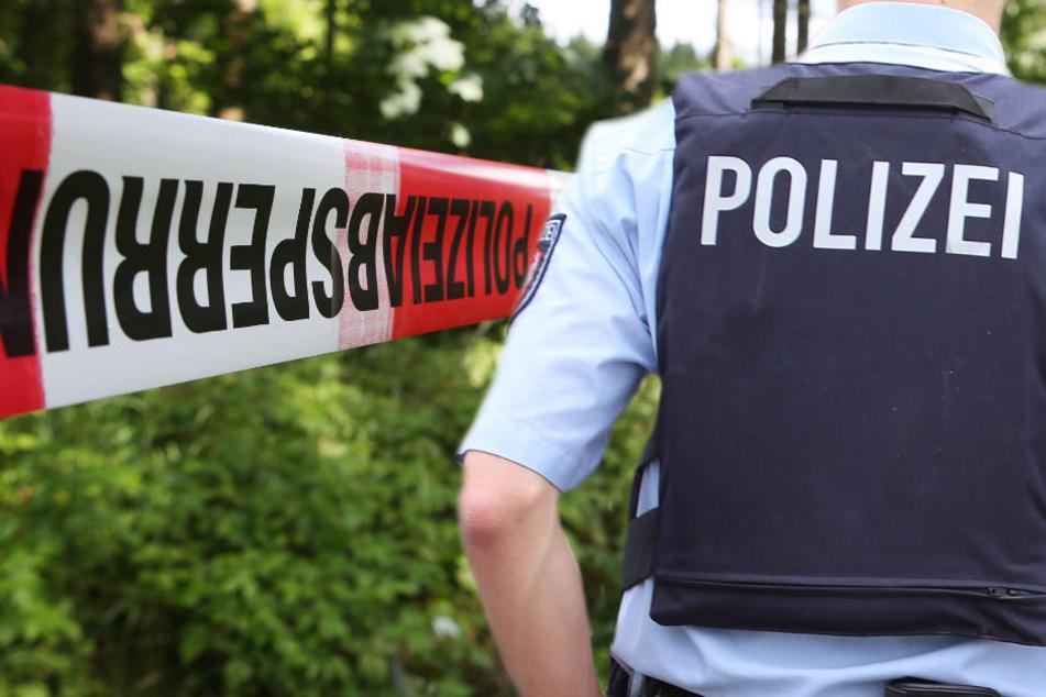 Die Vergewaltigung in dem Wald bei Aschaffenburg zog sich über Stunden hin (Symbolbild).