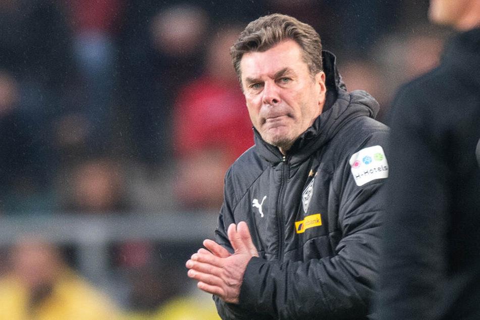 Dieter Hecking übernimmt als Cheftrainer beim HSV.