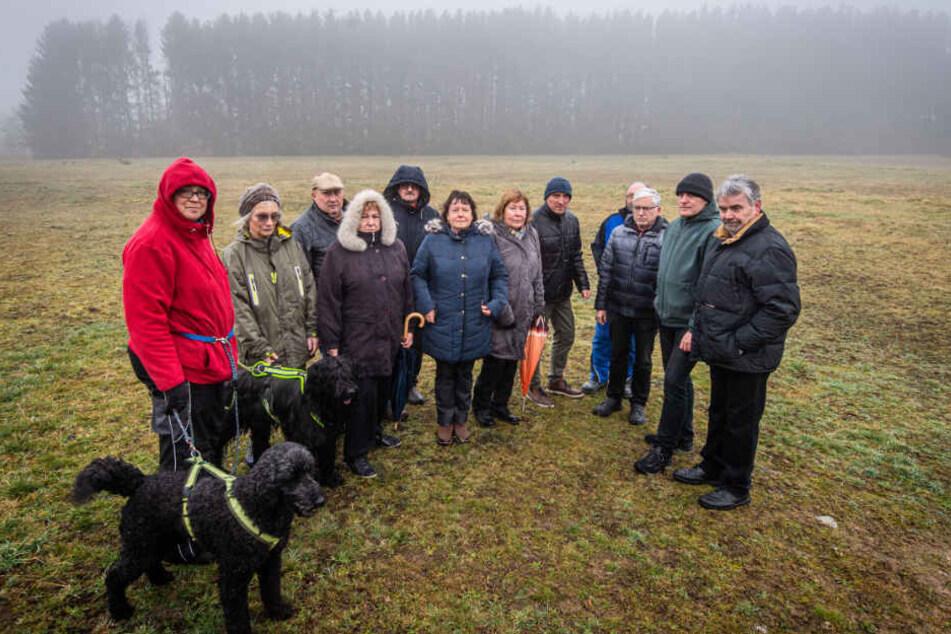 Wäldchen soll Wohngebiet weichen: Streit um geplante Abholzung in Chemnitz