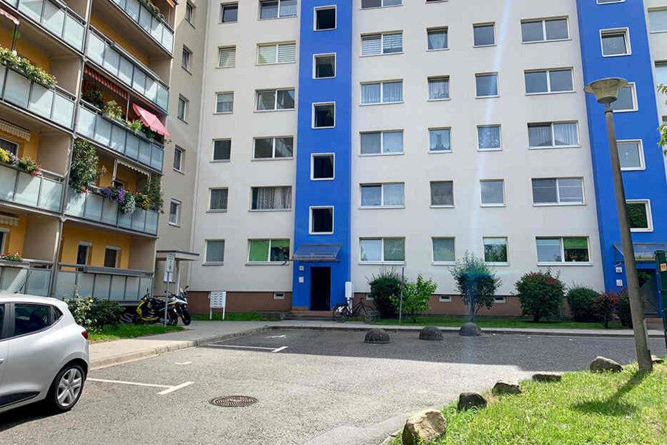In diesem Wohnkomplex in Pirna-Copitz wurde der verstorbene Mann gefunden.
