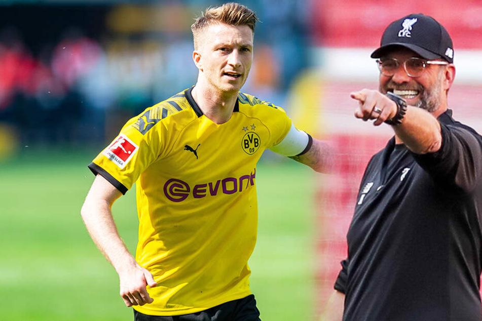Marco Reus (links) ist Fußballer des Jahres. Sein Ex-Trainer Jürgen Klopp Trainer des Jahres.
