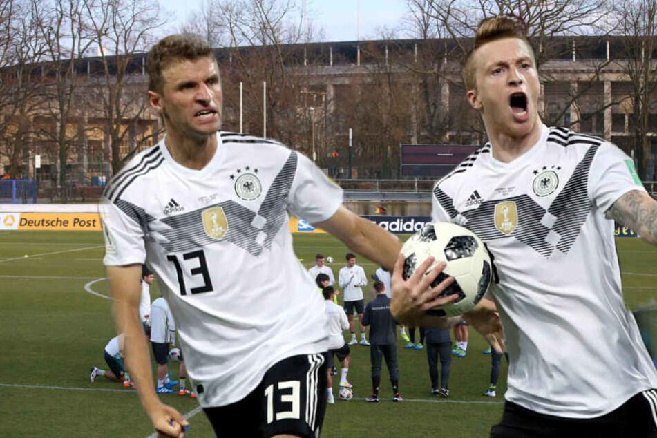 Die DFB-Elf wird am 9. Oktober ein öffentliches Training in Berlin absolvieren.