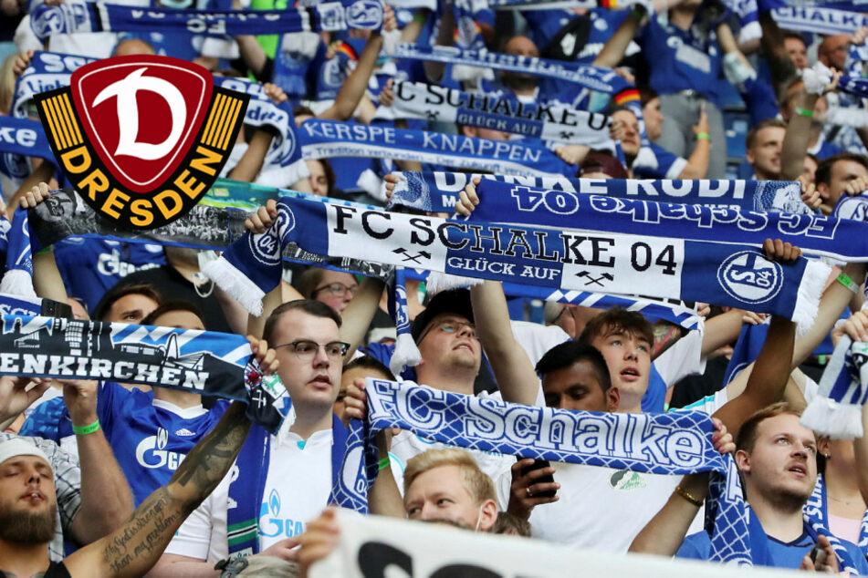 Auf Schalke wird es richtig laut! Dynamo vor bis zu 56.617 Fans bei S04