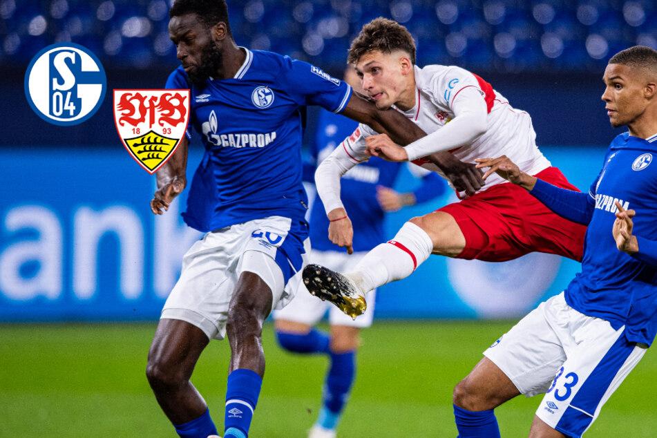 VfB vereitelt Schalker Befreiungsschlag! S04 seit 22 Spielen ohne Sieg