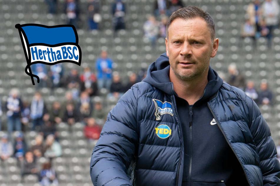 Doch keine Hertha-Rückkehr? Ex-Trainer Pal Dardai hält sich Zukunft offen