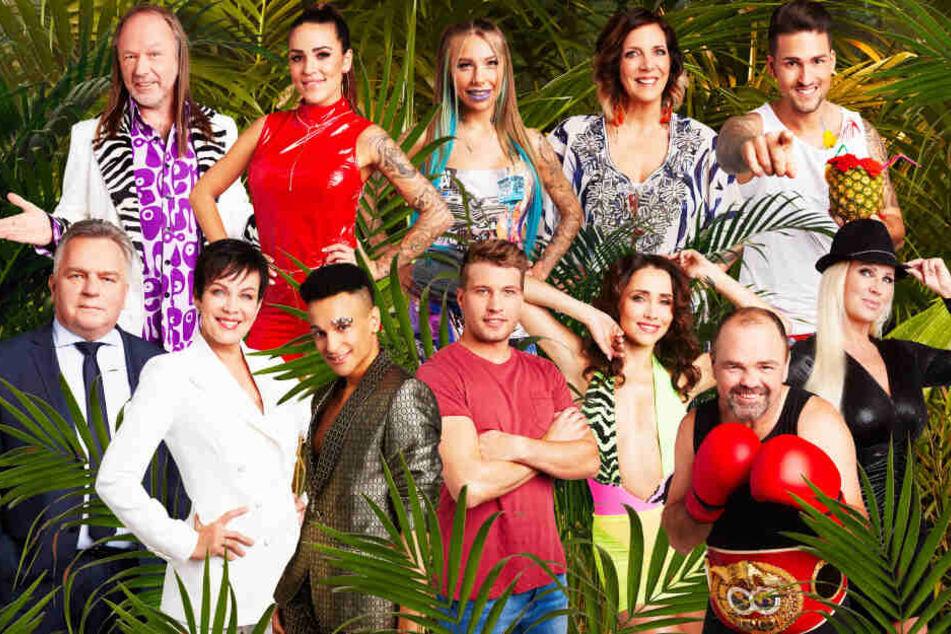 Das sind die Prominenten, die sich 2020 im australischen Dschungel abrackern.