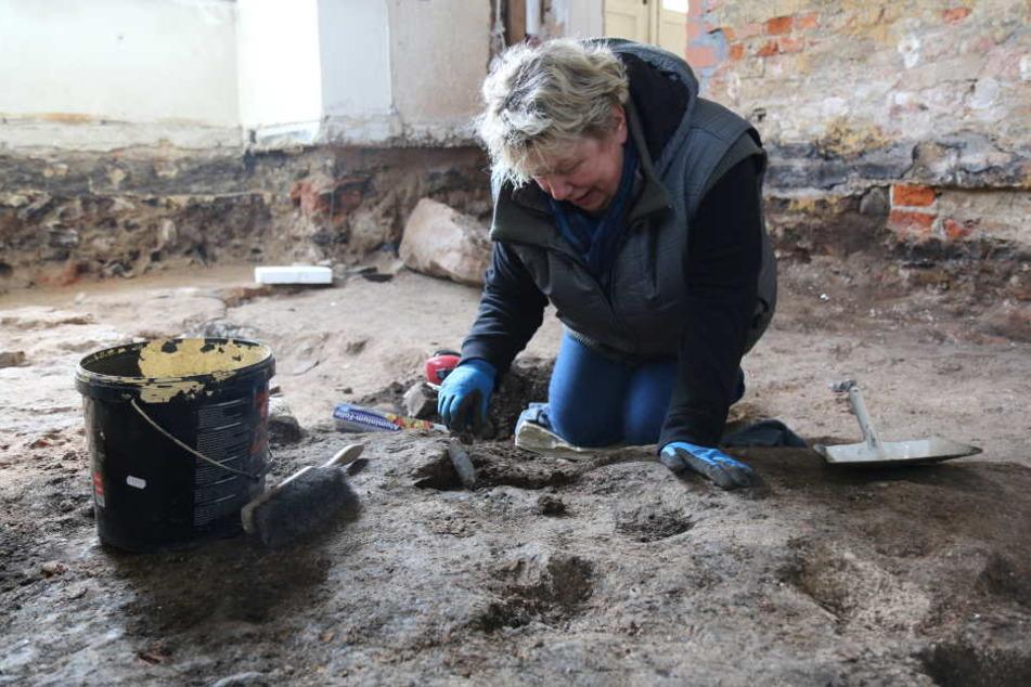 Die Grabungstechnikerin Cornelia Schnabel untersucht mit einer Kelle den Untergrund im Gewandhaus Zwickau.