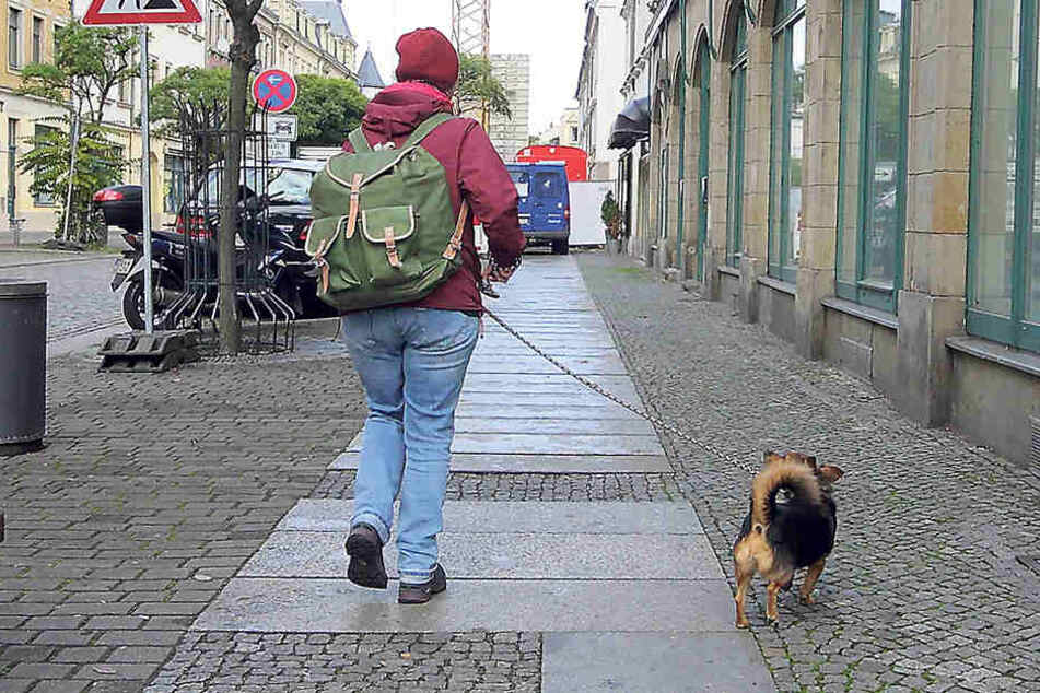 Stimmt der Stadtrat dem Votum des Ortsbeirates Pieschen zu, dürften Hunde, zum Beispiel  auf der Oschatzer Straße, nur noch an der Leine raus.