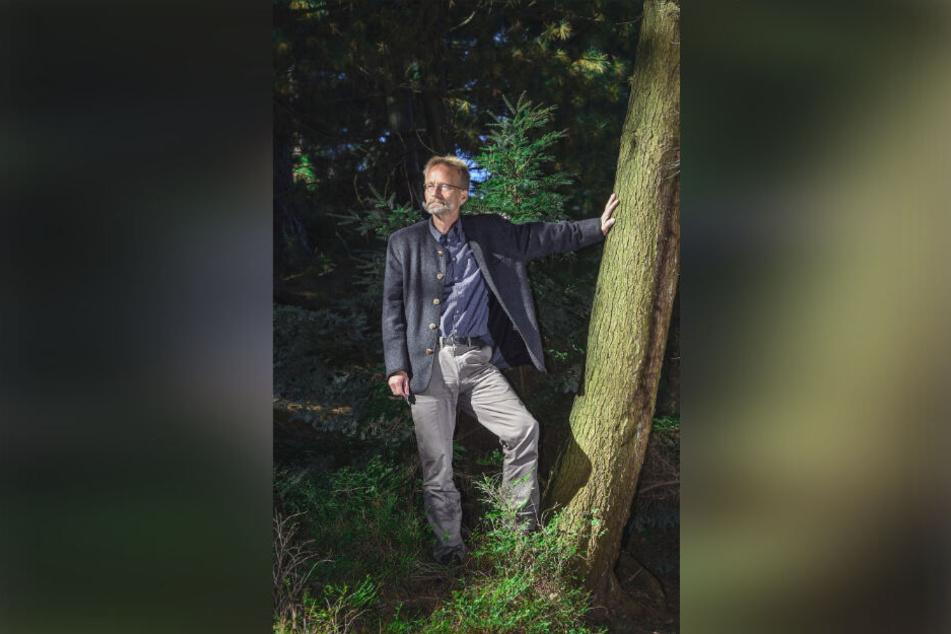 Prof. Andreas Roloff (64) verleiht Bäumen den Titel des Nationalerbes.
