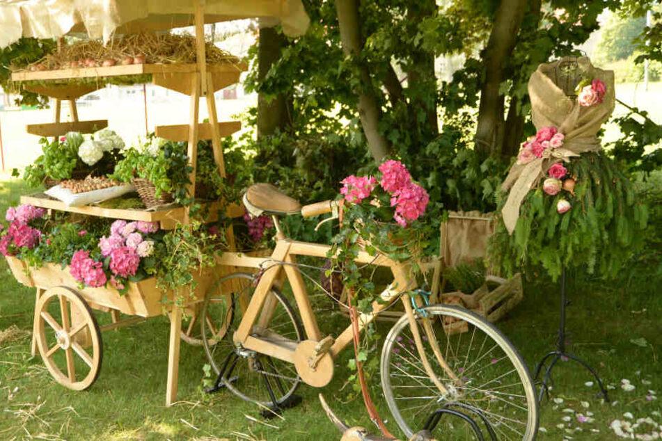 Die Sächsin verschönert Kleider mit Tannenzweigen und lässt Fahrräder erblühen.
